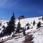 Iarna pe potecile Ceahlaului