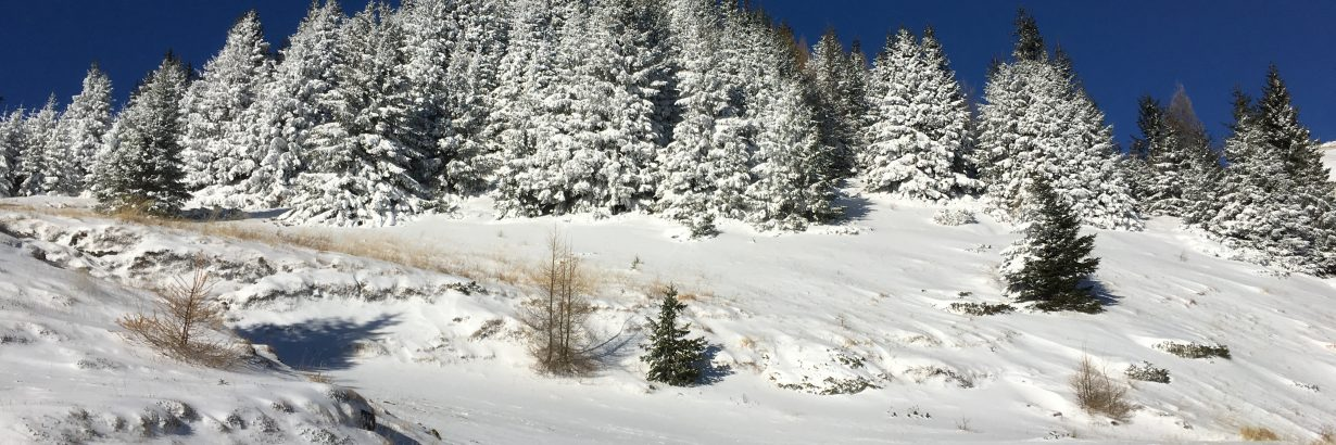 Inceput de iarna in Bucegi