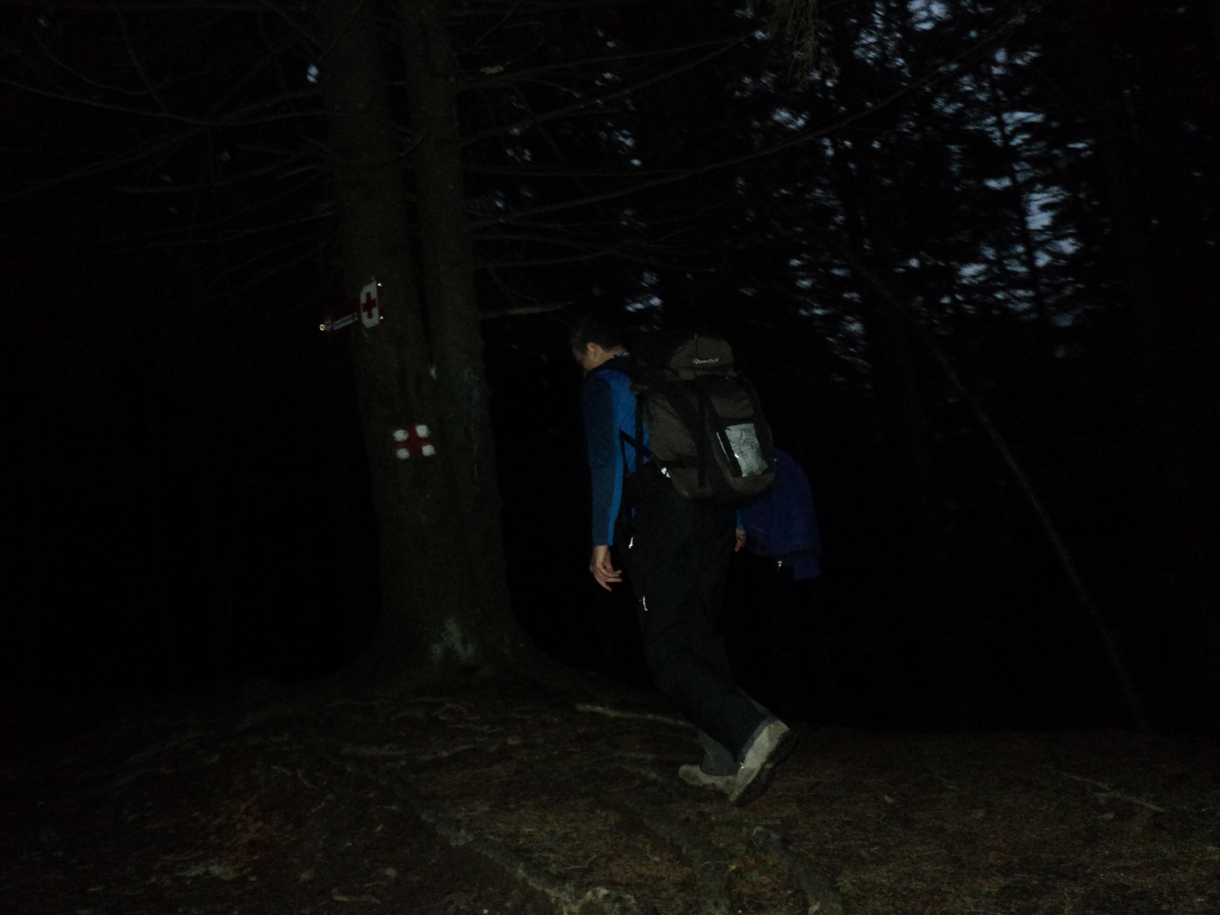 Noaptea pe munte