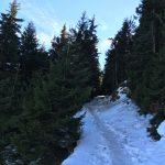 Trasee de iarna in Muntii Ceahlau
