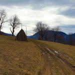 Tinuturi izolate - Muntii Cernei - Vf Arjana