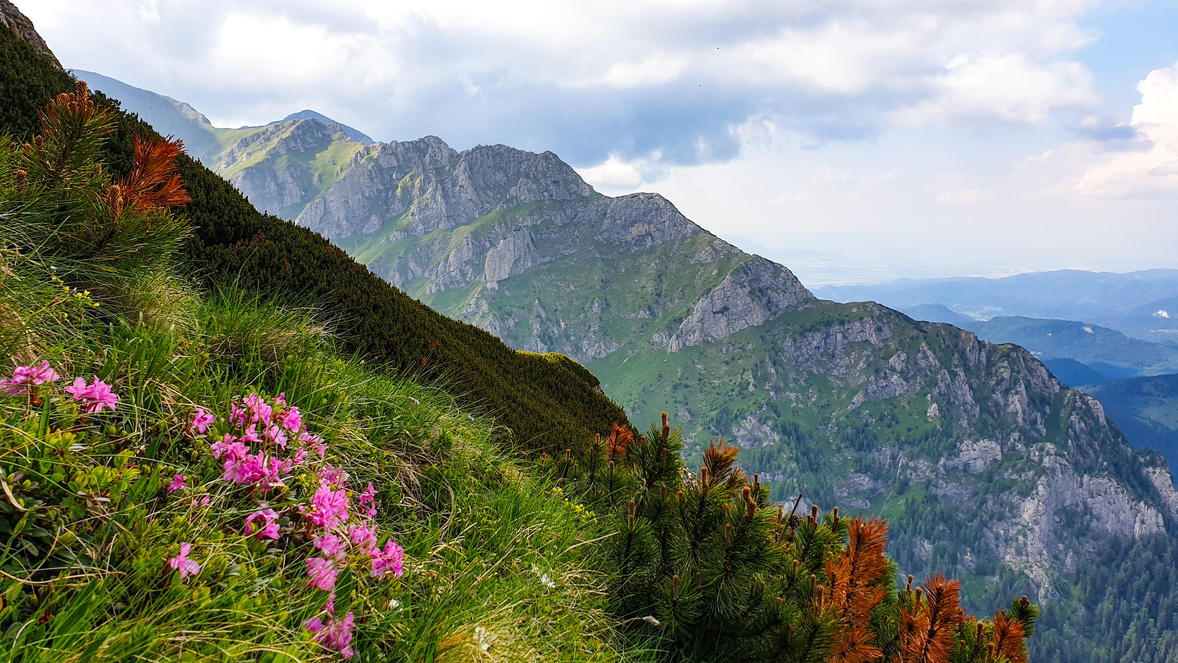 Nemarcate de Bucegi: Valea Malinului, Brana Mare a Costilei, Valea Priponului