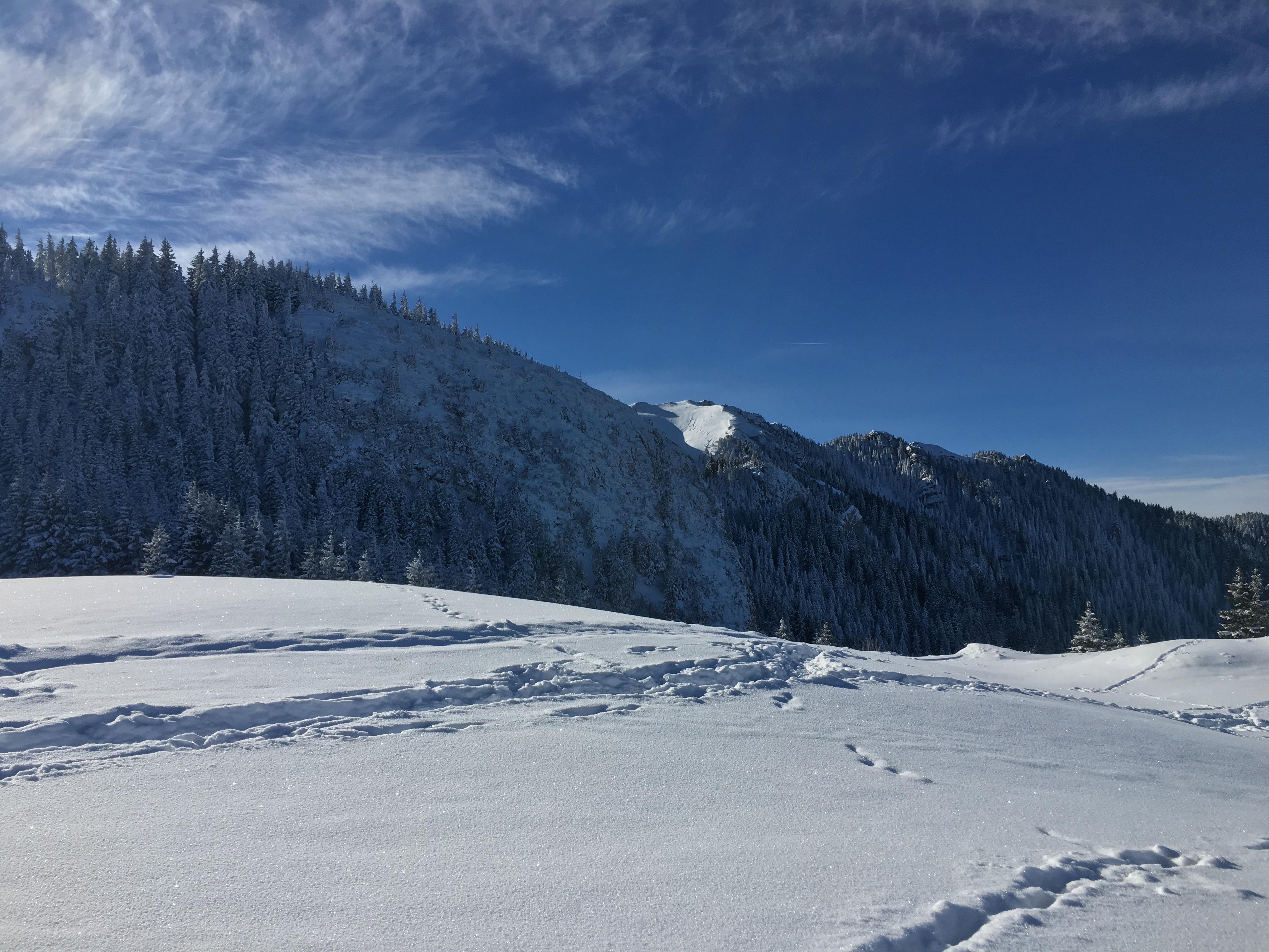 Iarna nu-i ca vara