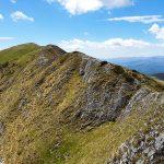 Creasta Oslei - Muntii Valcan