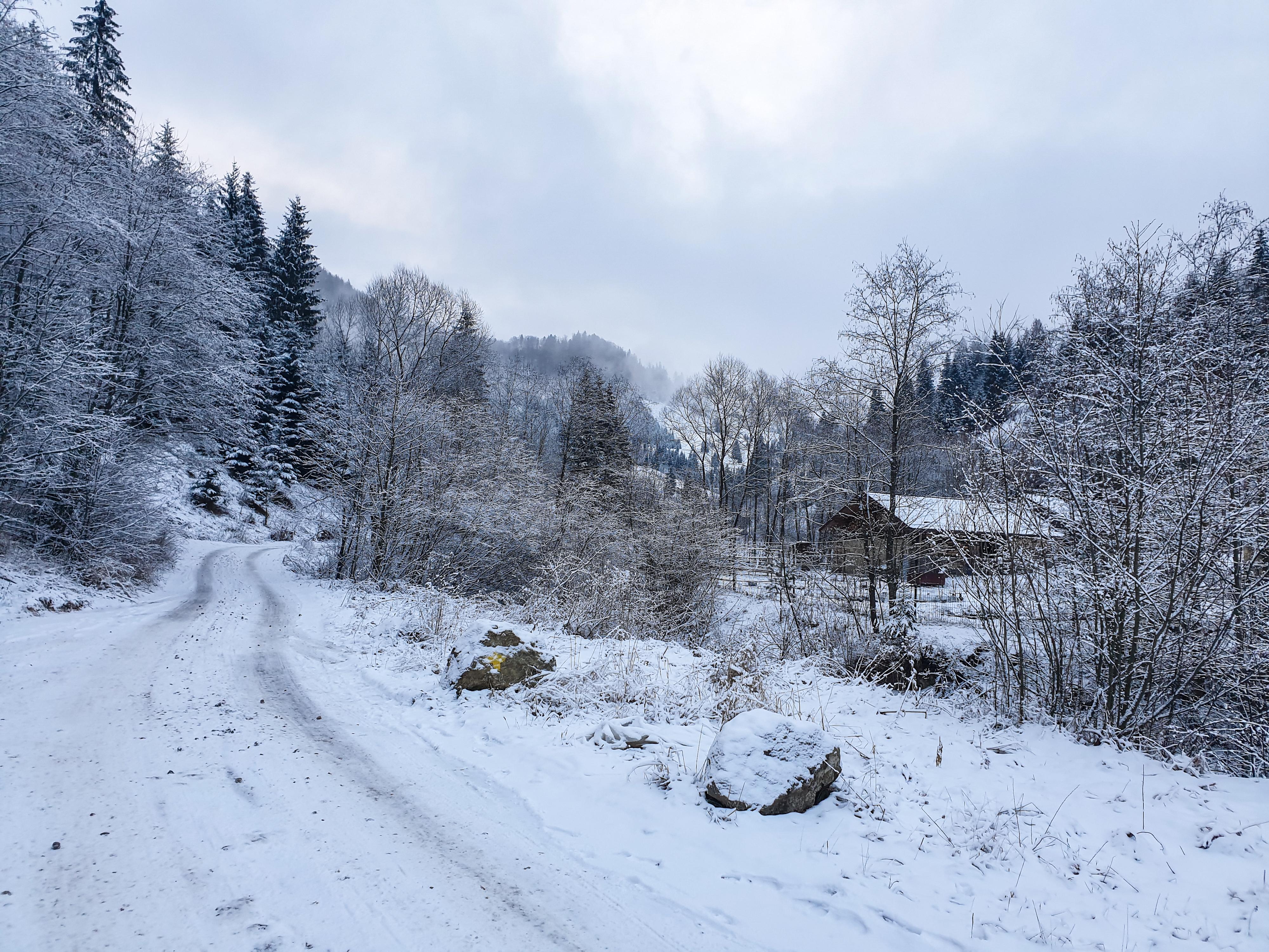 Prin frumoasa Bucovina - Muntii Rarau